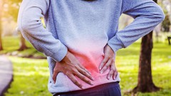 Extended Basic Exercise Program for Low Back Pain Relief
