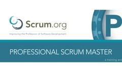 Scrum Master PSM1