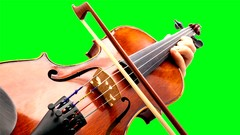 Beginner Fiddle Course - FIDDLE MASTERY FROM THE BEGINNING
