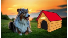 How to Start a Pet Care Business: Open Your Own Dog Kennel