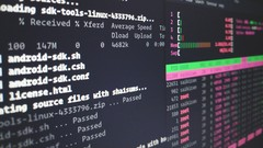 Curso Linux: Bash Shell