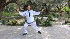 Tai Chi for Seniors Home Study Program