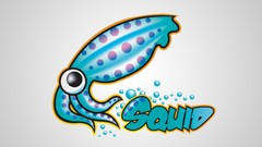 Squid Proxy Server On Linux: Anonymous browsing ...