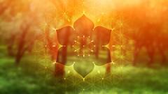 Imágen de El árbol de mindfulness