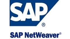 Installer Sap Netweaver 7.51 sur sa propre machine -Français