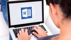 Microsoft Office word 2003-word从初学者到高级
