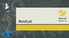 Curso de Navicat Manipulando banco de dados!