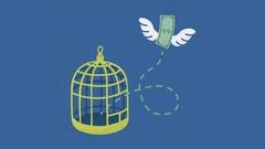 O Essencial Para a Independência Financeira