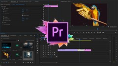 Adobe Premiere Pro Yeni Başlayanlar ve Öğrenciler İçin