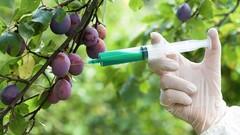 Gıda Katkı Maddeleri Eğitimi