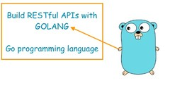 Golang: Build REST APIs with Golang  (Go programming lang)