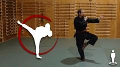 Martial Arts - Ninjutsu - Beginner Foundation