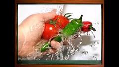 Food Hygiene Course