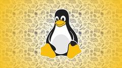 Impara Linux da zero: LPI Linux Essentials