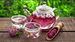 Herbal Home Remedies Certificate 101