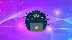Imágen de Python Desde 0 Hasta Hacking - MÁSTER En Hacking con Python