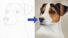 Draw a Jack Russell using Pastel Pencils