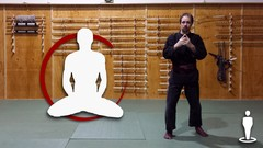 Martial Arts - Jujutsu - Beginner Foundation