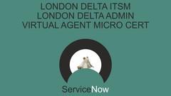 SERVICENOW  -  Deltas and Micros (See Description)