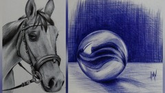 Introduction to Ballpoint Pen Drawing
