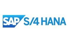 SAP S/4 HANA : Master Data Simplifications