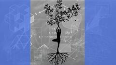 Movement Foundations: for Mastering the Yoga Basics