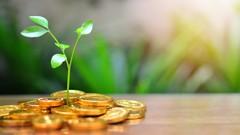 Buy Hard: Beginners' Guide to Mutual Funds