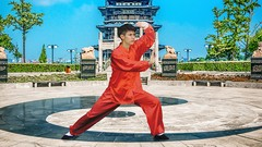 Tai Chi Qi Gong Moves for Beginners - For Energy, Arthritis