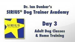 SIRIUS® Dog Training Academy - Day 3 of 4