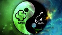 Netcurso - python-mysql