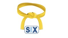 SIX SIGMA - YELLOW BELT