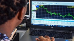 Profitable Forex with Risk Control