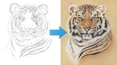Draw a Tiger using just 6 Pastel Pencils