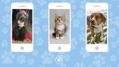 Cell Phone Photography for Pet Lovers