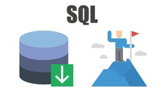 Business Analyst - SQL Survival Guide