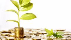 Remove Wealth Blocks & Create Abundance 30 Day Challenge