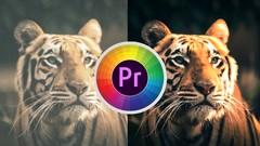 Premiere Pro : Color grading from zero to hero