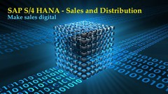 SAP S4 HANA Sales and Distribution