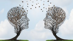 NLP & Hypnotherapy Client Work: Creating change one-to-one