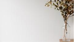 Netcurso-minimalismo-estilo-de-vida