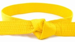 IASSC Certified Lean Six Sigma Yellow Belt practice exams