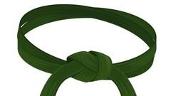 Certified Lean Six Sigma Green Belt (IASSC) practice