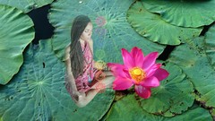 Chakra Challenge - 7 Days to Balance, Beauty & Bliss