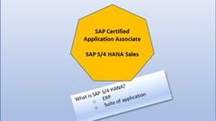 SAP Certification Practice Tests for S/4 HANA Sales