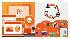 Office 365, Word, Excel, PowerPoint & Quickbooks: 5 Courses
