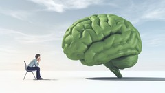 Netcurso-brain-ai