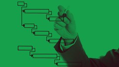 Microsoft Project 2019: Comprehensive Beginner Course