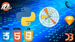 Learn to Master Python! From Beginner to Expert!