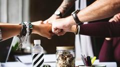 High Performance Team - Der Weg zur erfolgreichen Teamarbeit