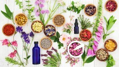 Introduction to Essential Oils and Natural Solutions